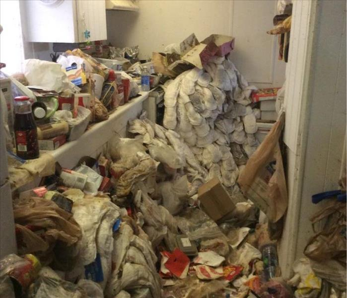 Extreme Hoarding Conditions (Before)