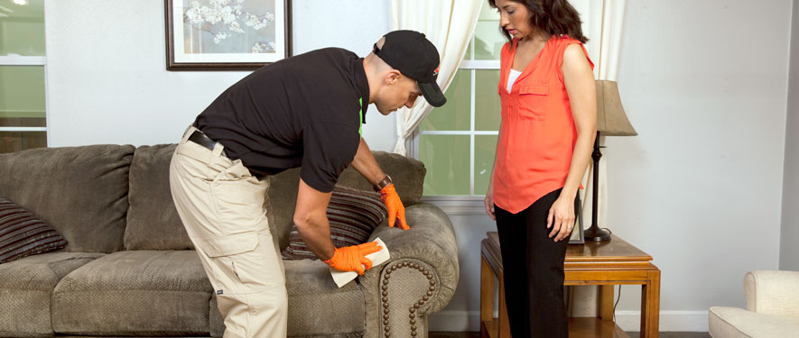Redondo Beach, CA carpet upholstery cleaning