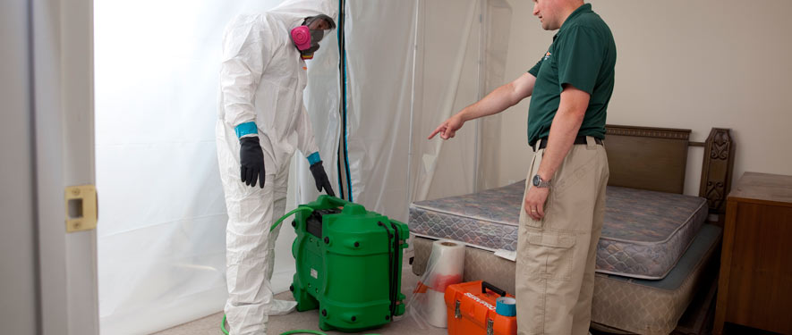 Redondo Beach, CA mold removal process